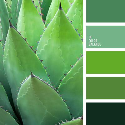 Цветовая палитра зеленый