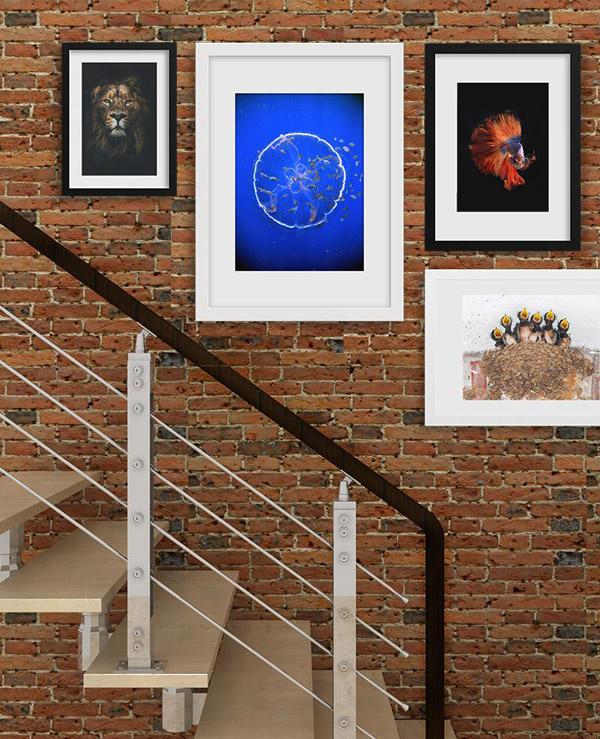 группа из разнородных изображений на лестнице